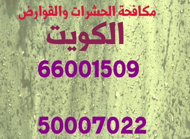 مكافحة الصراصير القرين 55306090