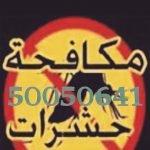 شركة مكافحة حشرات الشويخ السكنية 55306090 بالكويت