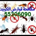 شركة مكافحة حشرات المنقف 55306090 بالكويت