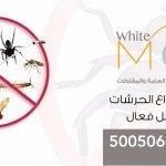 مكافحة حشرات الاحمدي