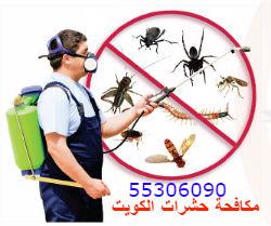 افضل شركة مكافحة حشرات بالكويت 2017 ؟