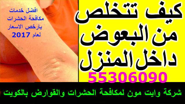 شركة الحشرات والقوارض بالكويت