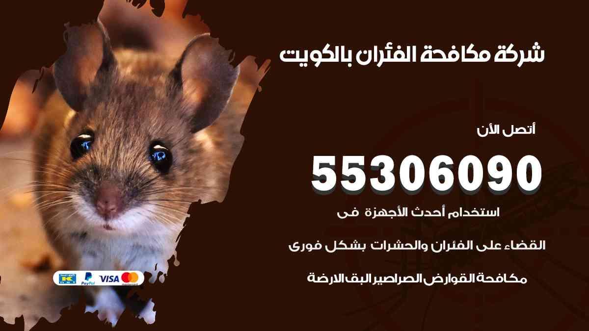 شركة مكافحة الفئران بالكويت