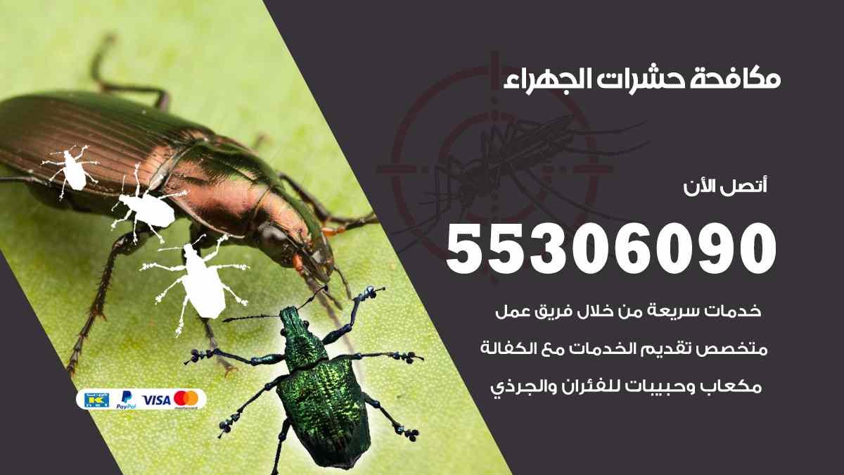 مكافحة حشرات الجهراء