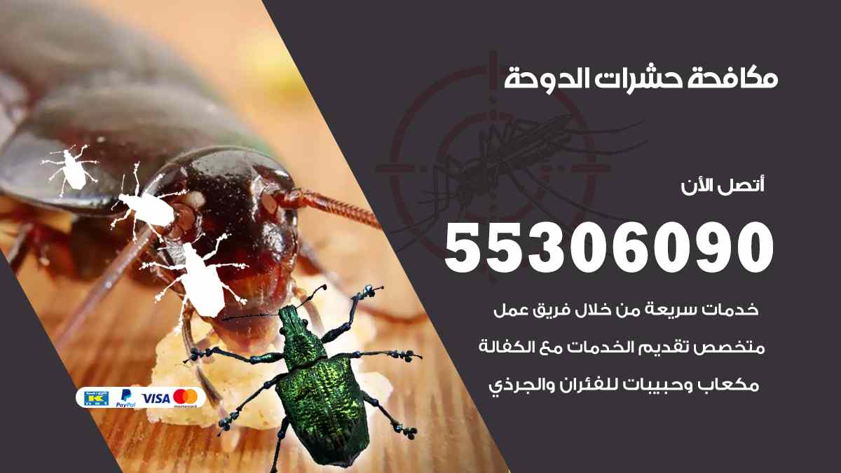 مكافحة حشرات الدوحة