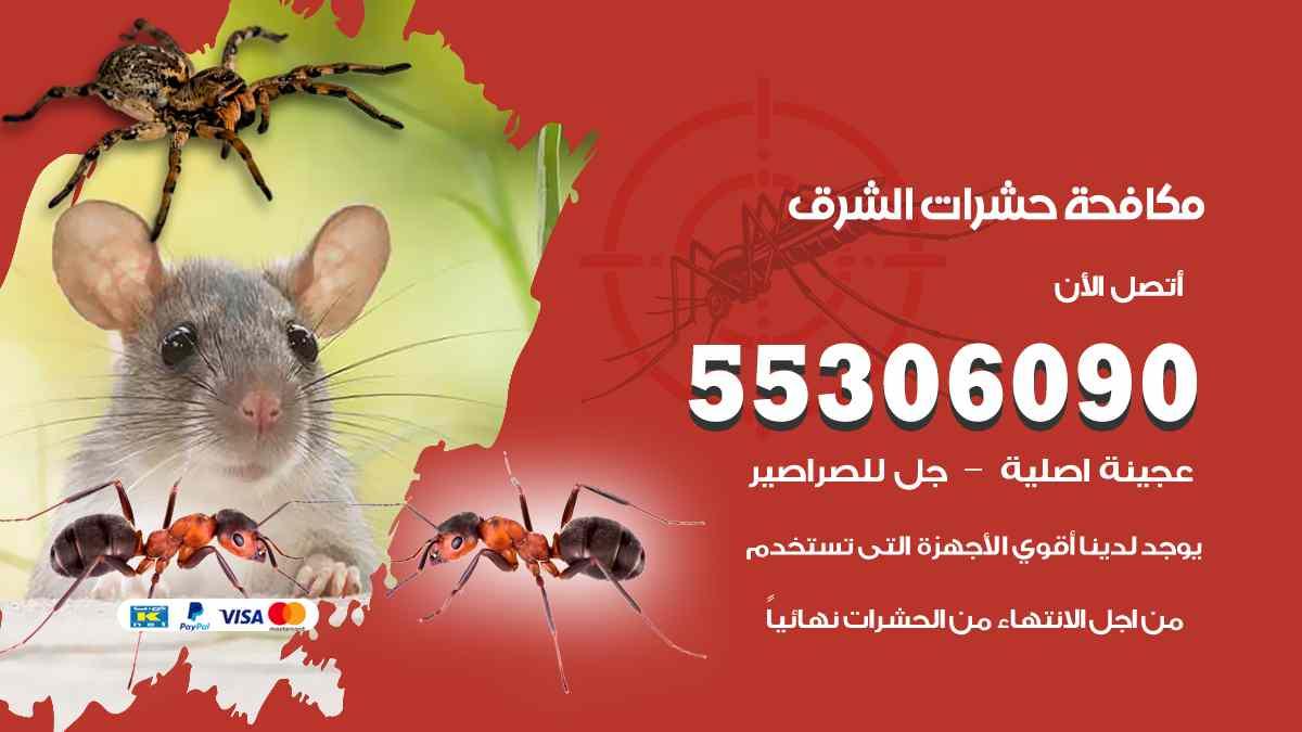 مكافحة حشرات الشرق