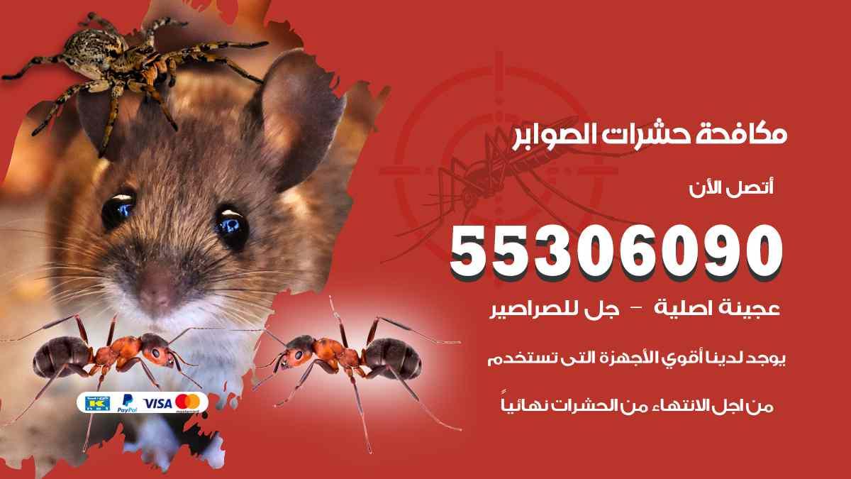 مكافحة حشرات الصوابر