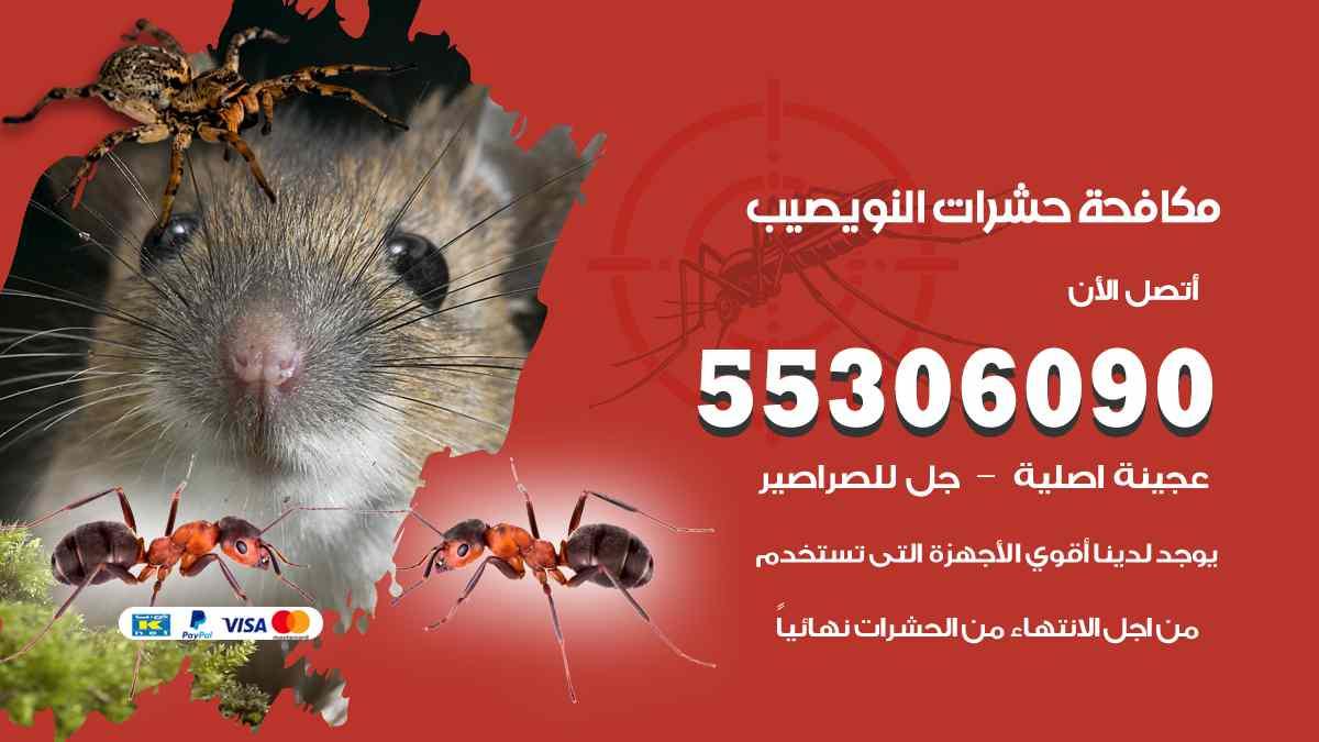 مكافحة حشرات نويصيب