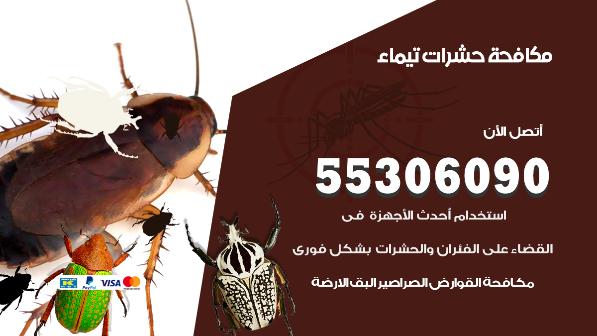 مكافحة حشرات تيماء