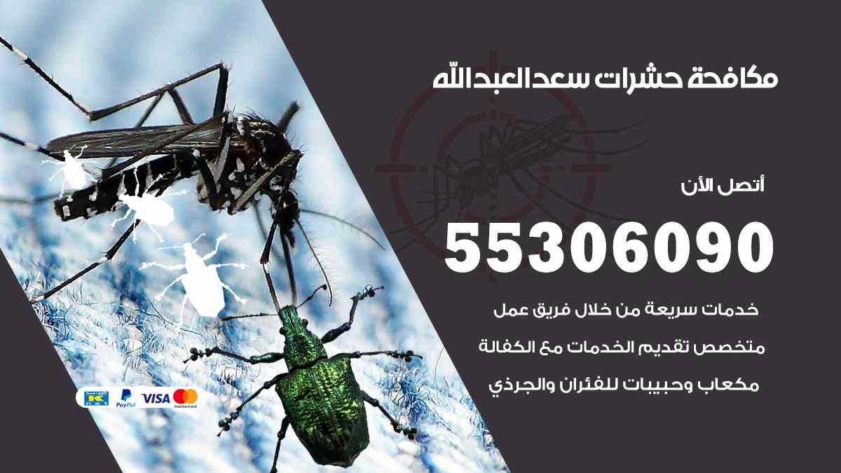مكافحة حشرات سعد العبد الله