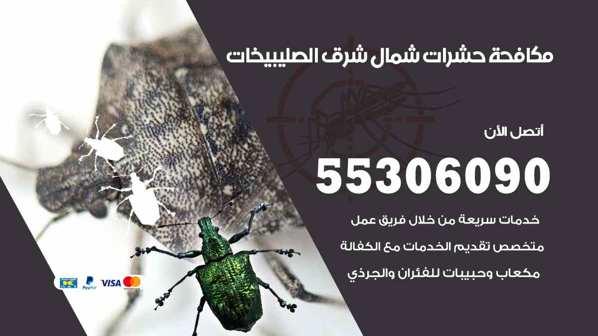 مكافحة حشرات شمال شرق الصليبيخات
